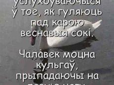 садовник_001.avi